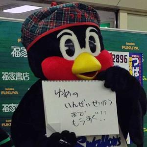 つば九郎の画像 p1_20