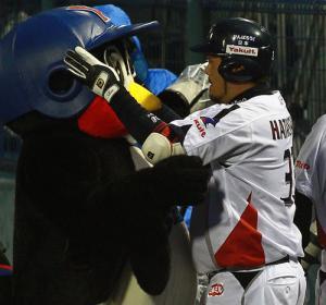 本塁打を放った畠山はつば九郎にモンゴリアンチョップ(撮影・沢野健太) 本塁打を放った畠山はつば九