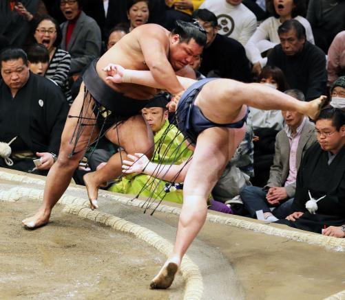 http://www.nikkansports.com/battle/sumo/news/img/01kaku-bt-n-170109201-w500_11.jpg