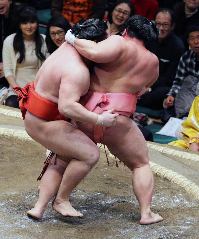 http://www.nikkansports.com/battle/sumo/news/img/01ura-bt-n-170109101-ogp_0.jpg