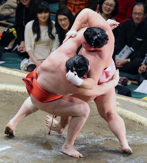 http://www.nikkansports.com/battle/sumo/news/img/03ura-bt-n-170109103-w500_2.jpg