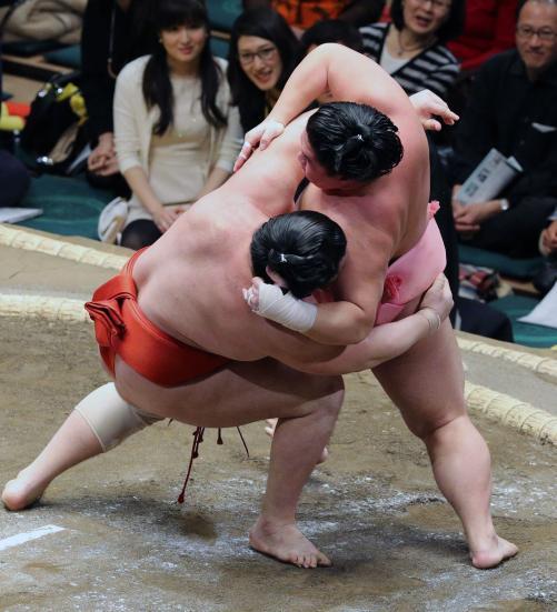 http://www.nikkansports.com/battle/sumo/news/img/04ura-bt-n-170109104-w500_3.jpg