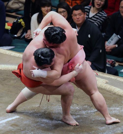 http://www.nikkansports.com/battle/sumo/news/img/05ura-bt-n-170109105-w500_4.jpg