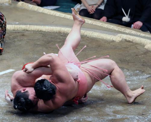 http://www.nikkansports.com/battle/sumo/news/img/10ura-bt-n-170109110-w500_9.jpg