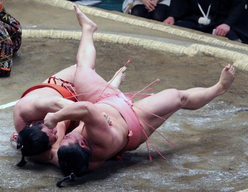 http://www.nikkansports.com/battle/sumo/news/img/11ura-bt-n-170109111-w500_10.jpg