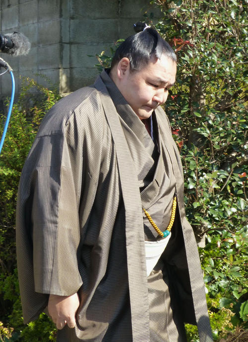 http://www.nikkansports.com/battle/sumo/news/img/201711230000142-w500_0.jpg