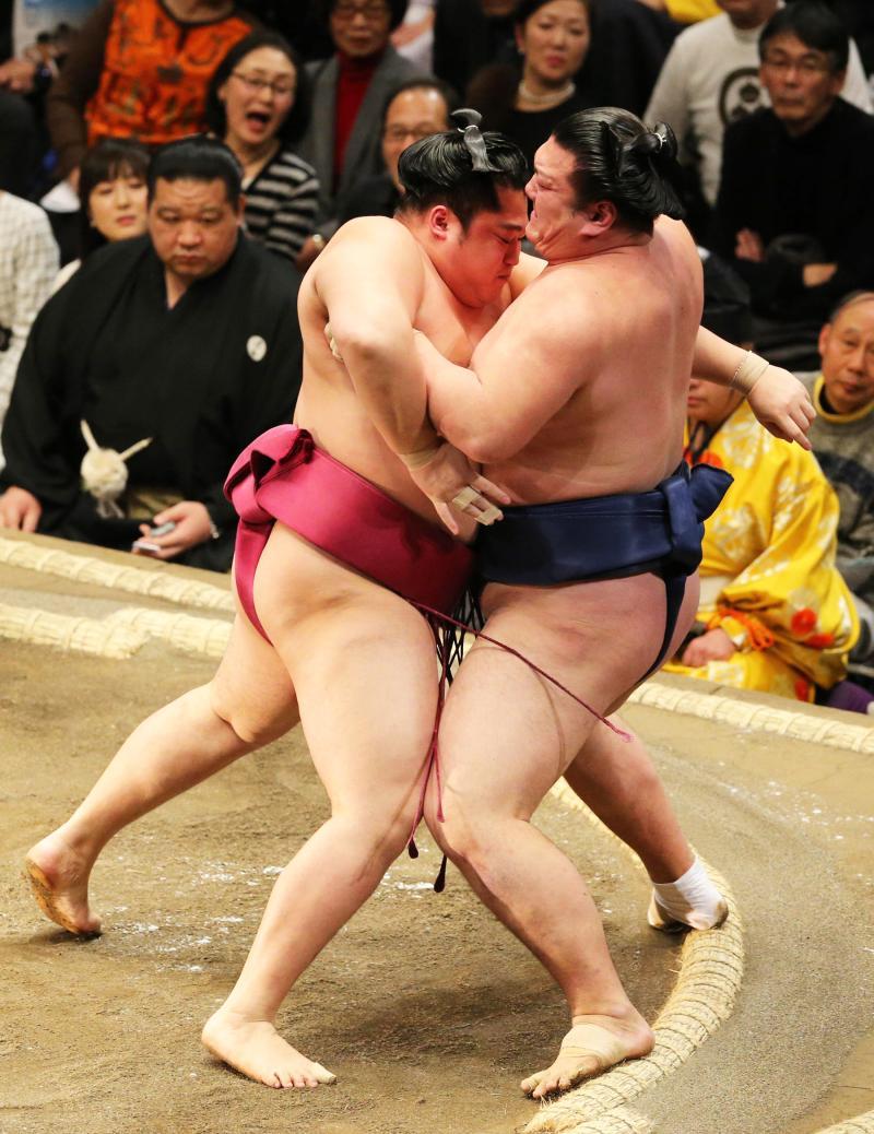 http://www.nikkansports.com/battle/sumo/news/img/P20170109_suga_en_do-ogp_0.jpg