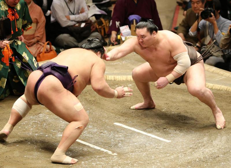 bt-hakuho-ty0119-ogp_0.jpg
