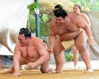bt-sumo-kise-kc20170705-w200_0.jpg