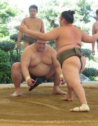 bt-sumo-kise-kc20170708-w200_0.jpg