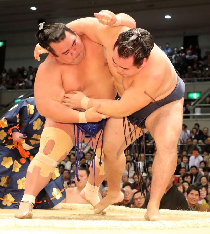 bt-sumo-sy20170316-ogp_0.jpg
