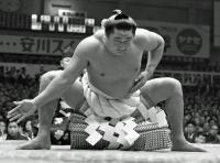bt-sumo-waka-kc20170125-w200_0.jpg