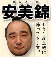 bt-sumo_election_result160609_aminishiki