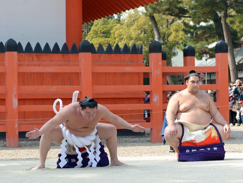 f-sumo-hakuhou160305yg-ogp_0.jpg