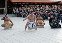 f-sumo-kise170127yg-w200_0.jpg