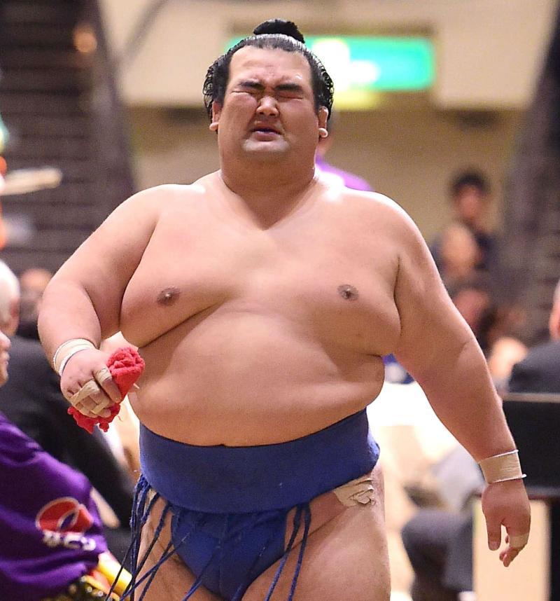 kotosyougikuP2016012203011-ogp_0.jpg