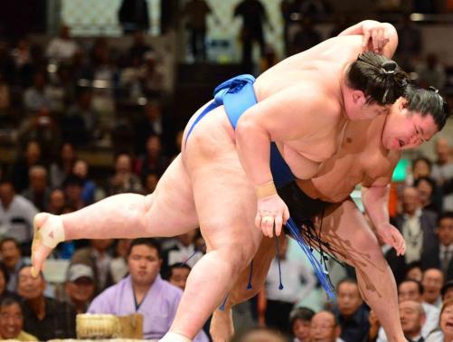 smo-goeido-yusho-nt151006-w500_0.jpg