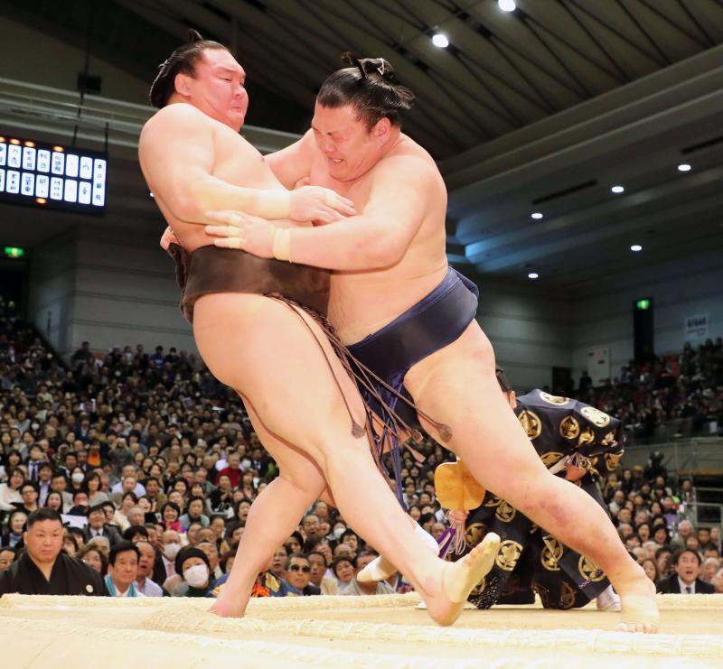 su-ikioi-wa-201120170315-ogp_0.jpg