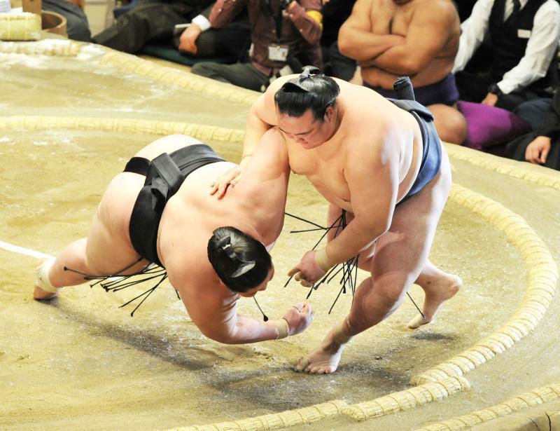 sumo20160115_ym_kisenosato-ogp_0.jpg