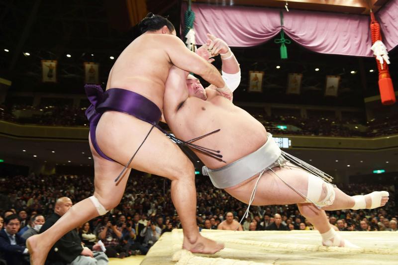 sumo20160122_ym_hibiki-ogp_0.jpg