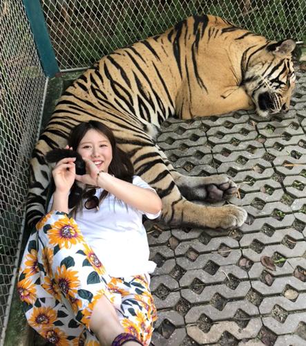タイのタイガータウンで虎と遊ぶ(本人提供)