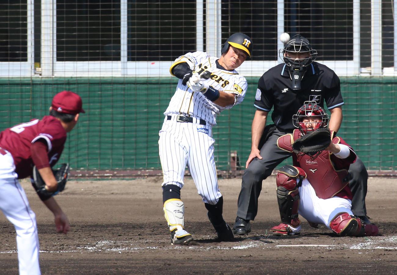 練習試合 阪神対楽天 4回裏阪神無死、佐藤輝は左前打を放つ(撮影・上山淳一)
