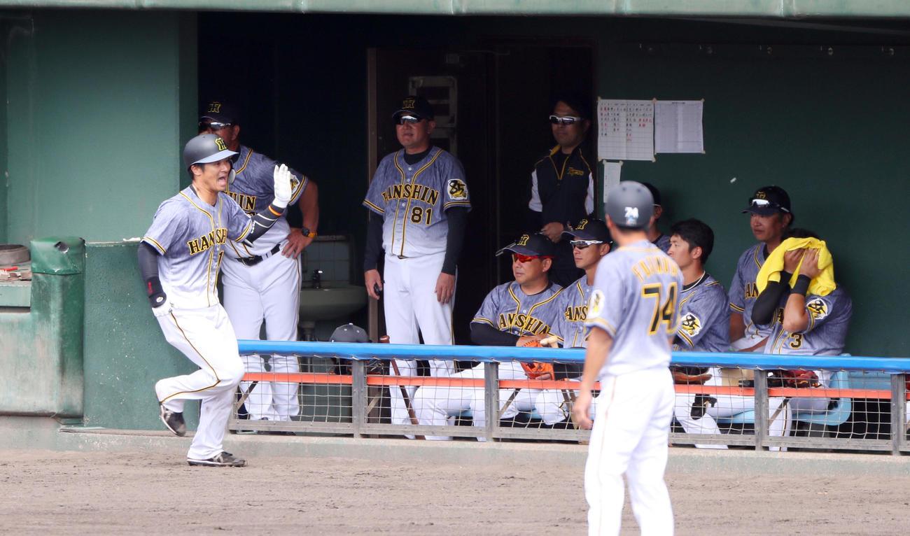 先制の2点本塁打を放った坂本はナインにサイレントトリートメントで迎えられる(撮影・前田充)