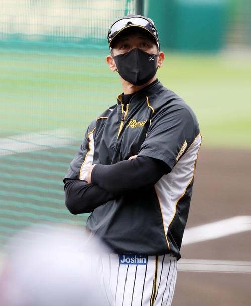 阪神矢野燿大監督(2021年4月30日撮影)