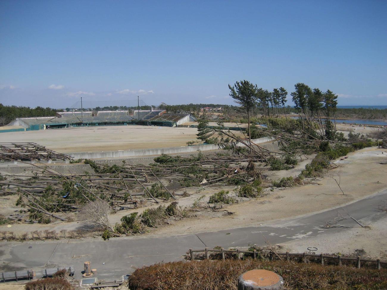 11年3月、津波の被害を受けた岩沼海浜緑地公園野球場(提供写真)