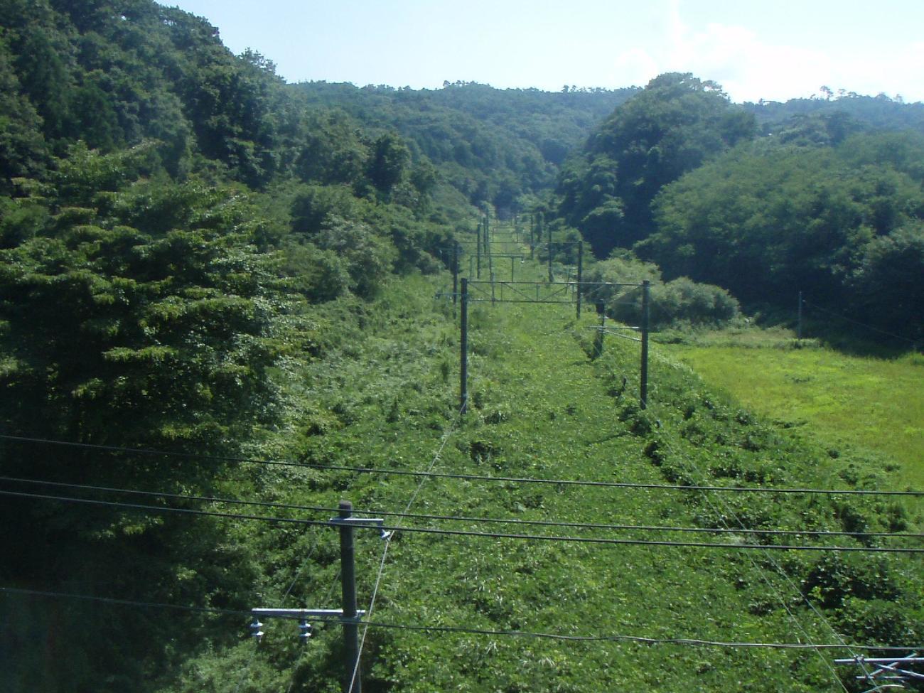 12年9月、JR常磐線富岡-竜田間の線路は雑草で埋め尽くされていた