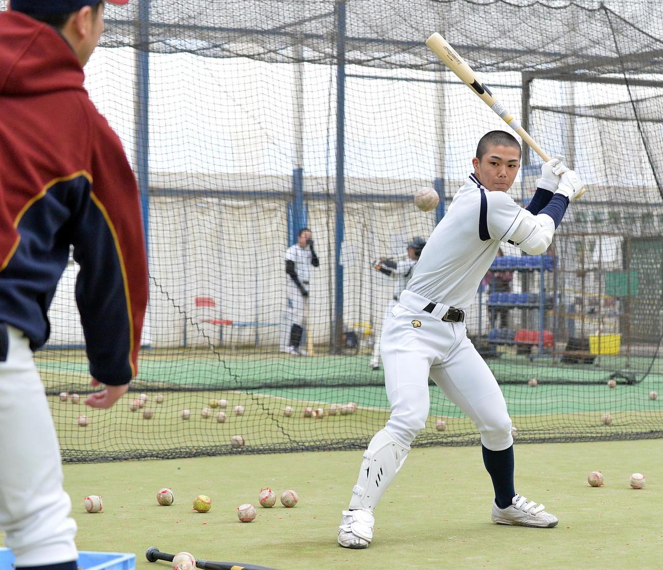 学院 部 星 メンバー 八戸 光 野球