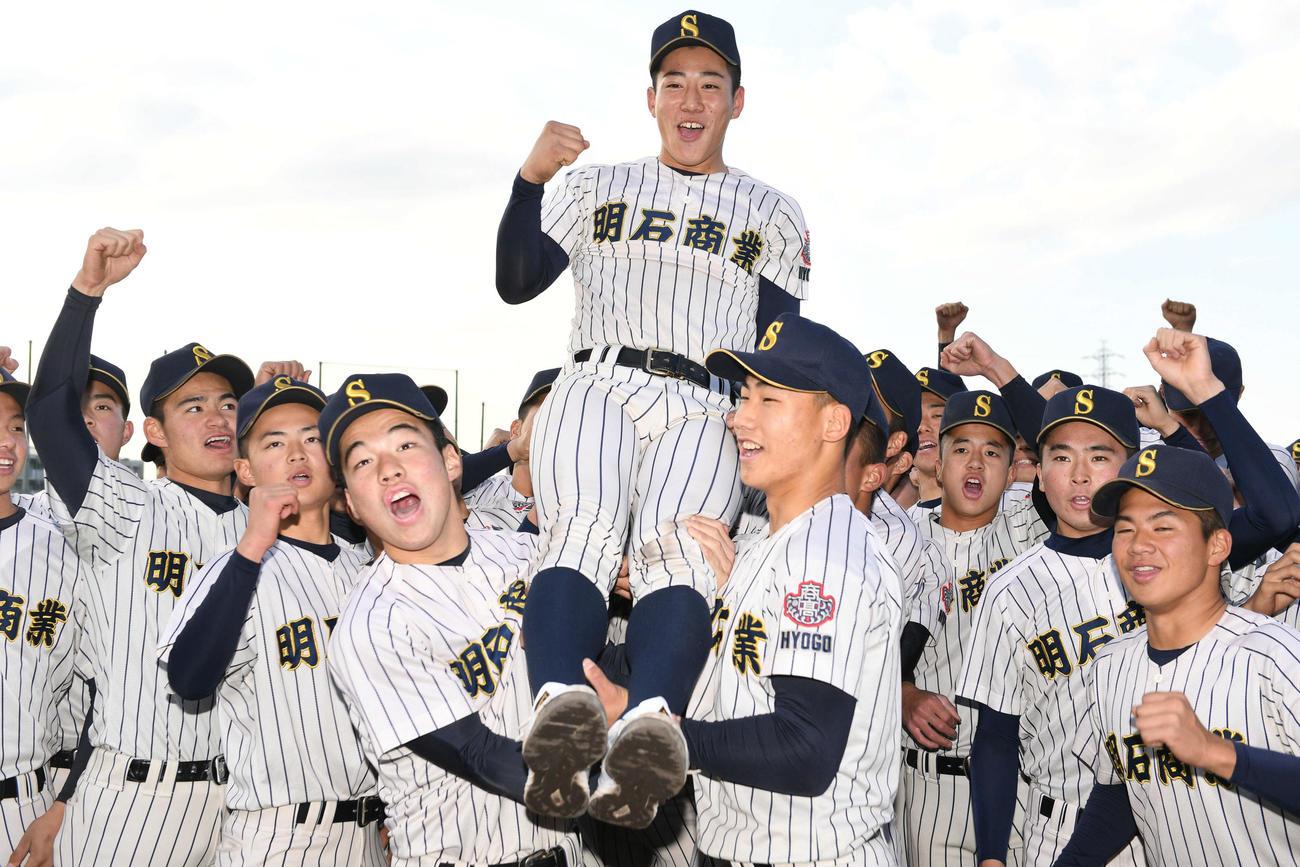 来田涼斗主将を抱き上げ喜ぶ明石商ナイン(撮影・渦原淳)