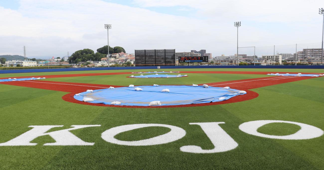 横浜スタジアムの芝目、色使いを意識している向上の新グラウンド(撮影・古川真弥)