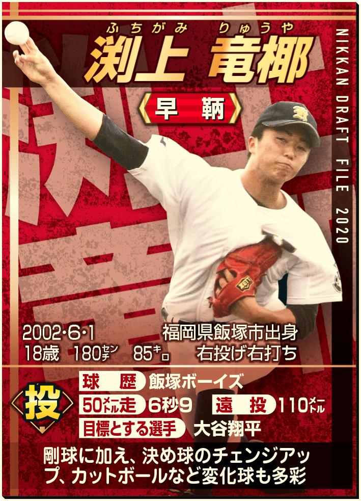 高校 野球 選手 山口 県 注目