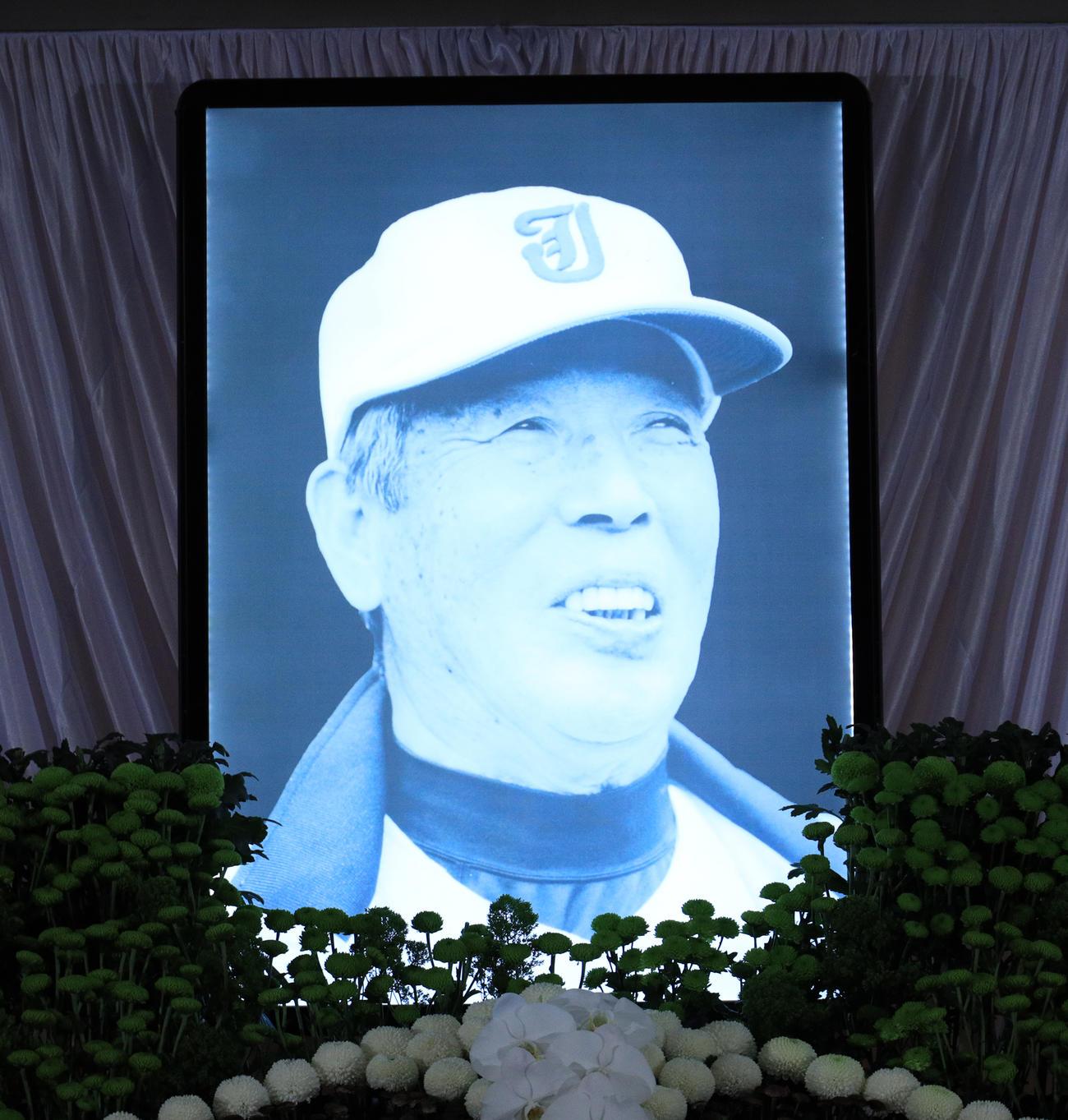 祭壇に飾られた常総学院元監督の木内さんの遺影(撮影・中島郁夫)