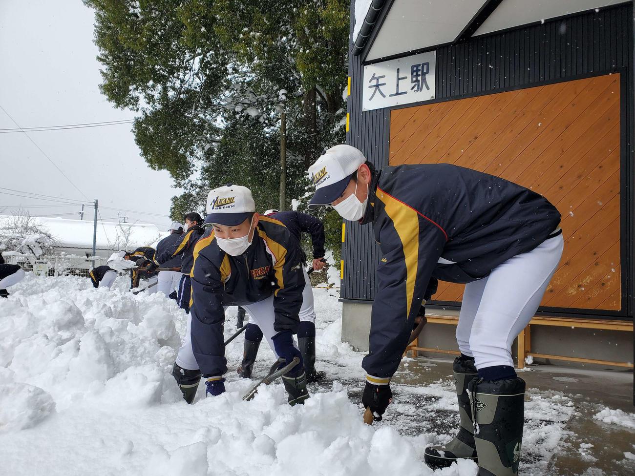 ユニホーム姿で雪かきする矢上ナイン(チーム提供)