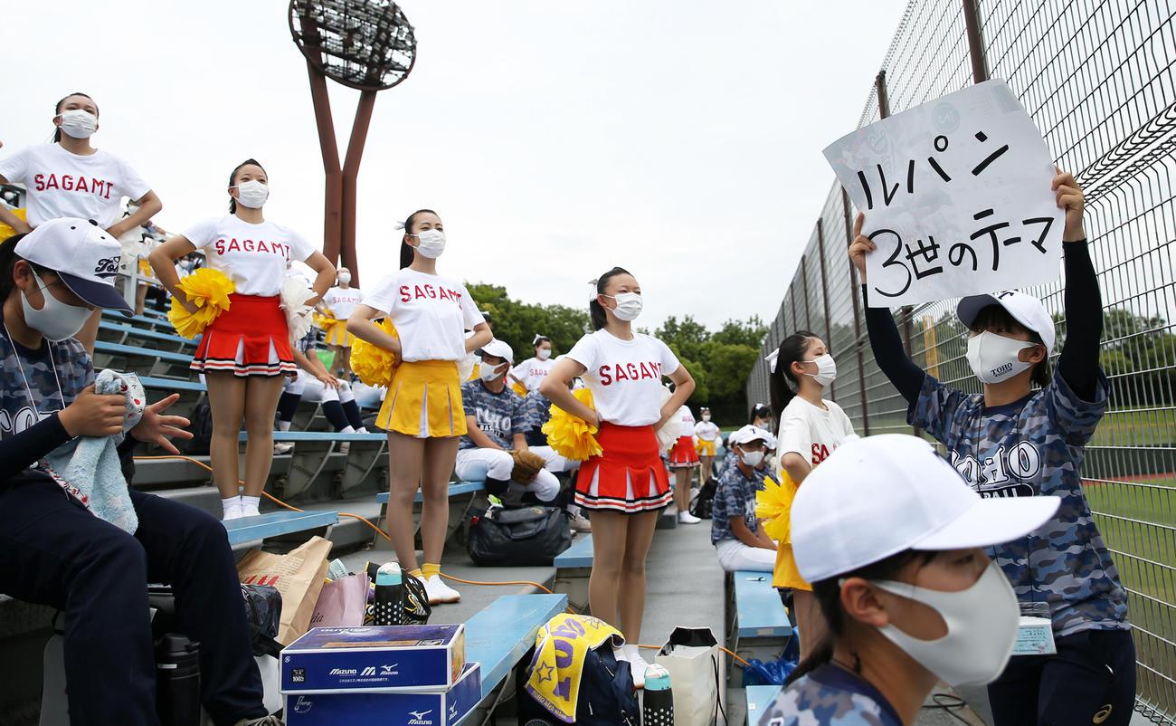 「SAGAMI」の文字が入った衣装を着て東海大相模を応援する東邦のチアガールたち(撮影・前田充)