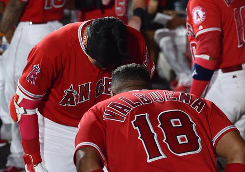 エンゼルス対ホワイトソックス 5回裏エンゼルス無死二塁、右中間に9号2点本塁打を放ち、ベンチでバルブエナ(手前)とお辞儀するエンゼルス大谷(撮影・菅敏)