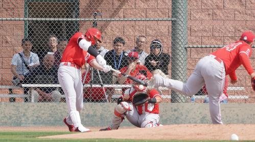 投手相手の打撃練習で打球を放つエンゼルス大谷。投手はスアレス(撮影・菅敏)