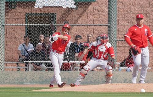 投手相手の打撃練習で打球を放ち、厳しい表情で声を上げるエンゼルス大谷。投手はスアレス(撮影・菅敏)