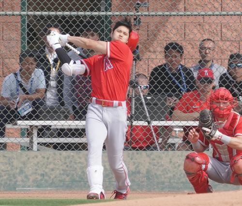 投手相手の打撃練習で打球を放ち、勢い余ってヘルメットを飛ばすエンゼルス大谷(撮影・菅敏)