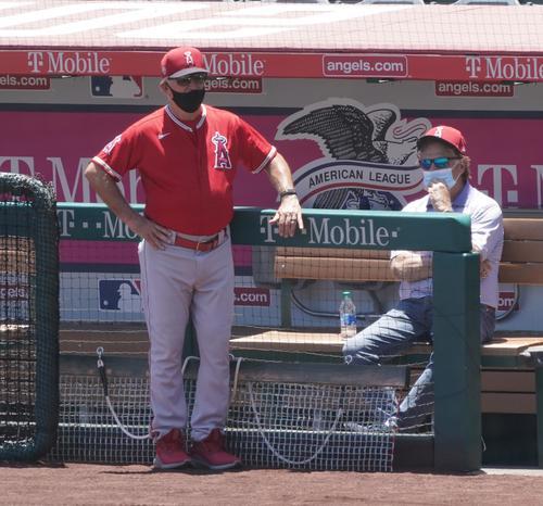 エンゼルスタジアムでのサマーキャンプ初日、練習する選手に視線を送るマドン監督(左)(撮影・菅敏)