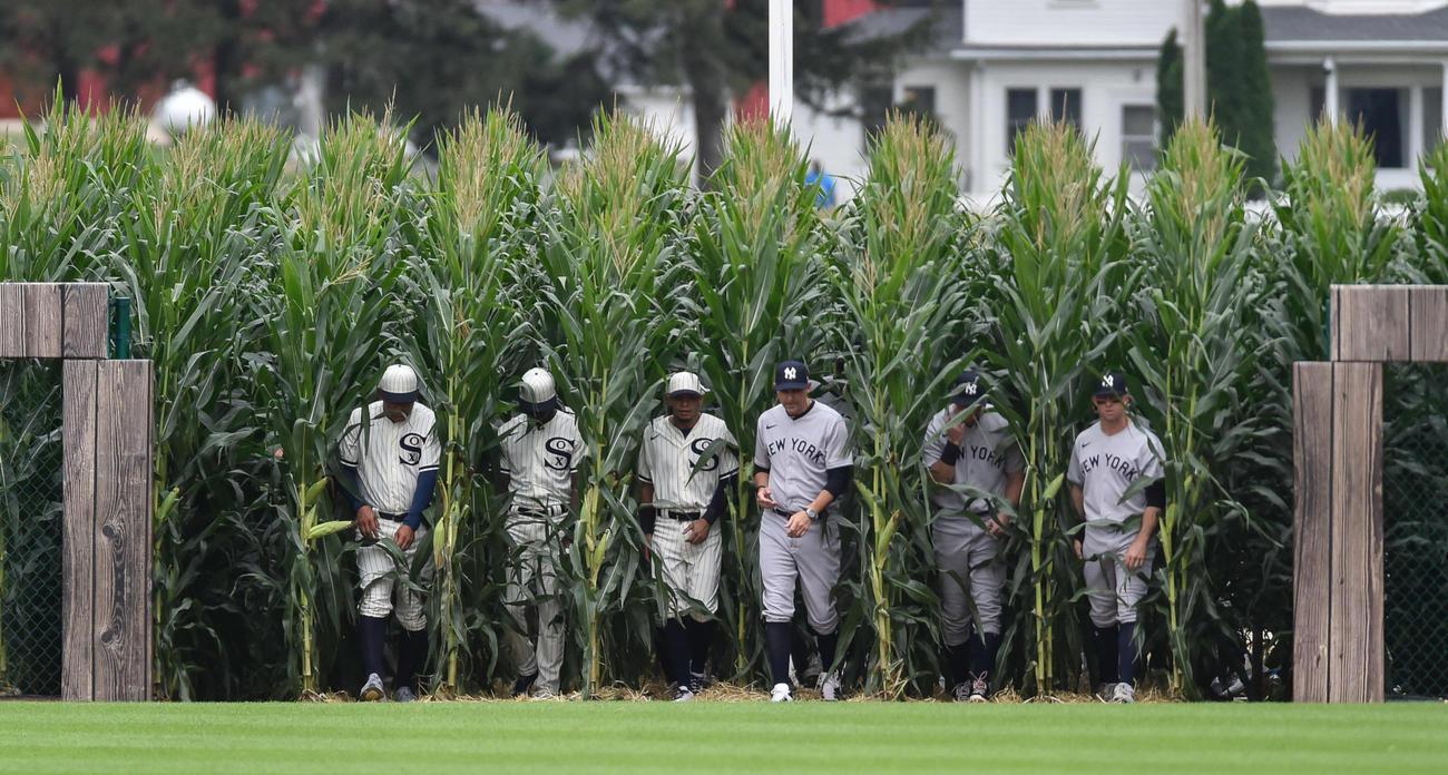 映画にちなみ、トウモロコシ畑から出てくるホワイトソックスとヤンキースの選手ら(USA TODAY)