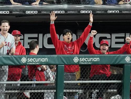 ホワイトソックス対エンゼルス 8回、打者マーシュの本塁打にベンチで喜ぶエンゼルス大谷(中央)(撮影・菅敏)