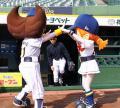 イチローが神戸自主トレ打ち上げ - MLBニュース