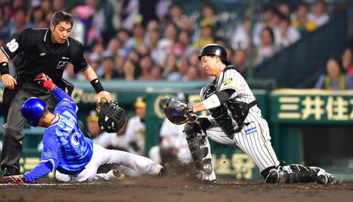 阪神対DeNA 5回表DeNA1死二塁、ソトの左前打で二塁から生還する大和、捕手梅野(撮影・清水貴仁)