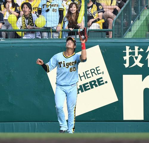 阪神対巨人 9回表1死満塁、長野の飛球をいったんグラブに収めたかに見える阪神中谷(撮影・奥田泰也)