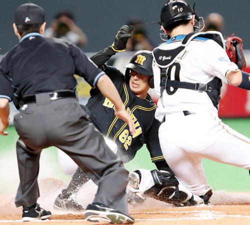 日本ハム対阪神 8回表阪神無死一塁、植田は打者糸原のときエンドランでスタートを切り本塁へ生還する(撮影・加藤哉)