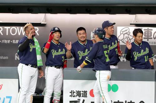 坂口の右前適時打で生還した藤井を出迎えるチームメート(撮影・佐藤翔太)