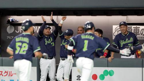 青木の右越え適時二塁打で盛り上がるヤクルトベンチ(撮影・佐藤翔太)